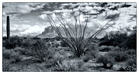 ocotillo Superstitions 20121231 pano2 00gs